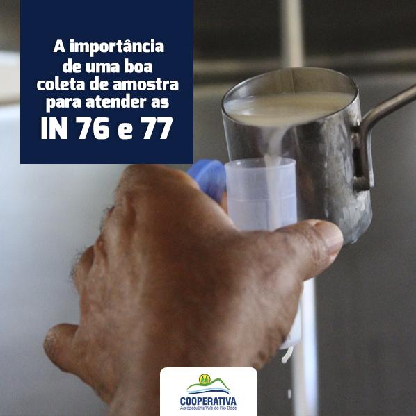 A IMPORTÂNCIA DE UMA BOA COLETA DE AMOSTRA PARA AS IN 76 e 77/2018