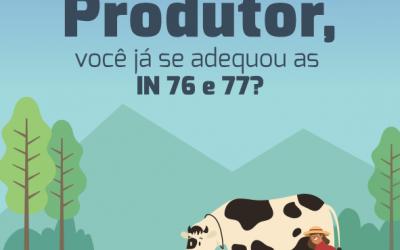 IN 76 e 77 estabelecem regras para o fornecimento de leite
