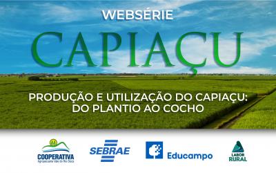 Cooperativa irá lançar Websérie sobre a utilização do Capiaçu
